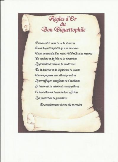 regles-d-or-du-bon-biquettophile.jpg